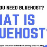 What is bluehost Hosting